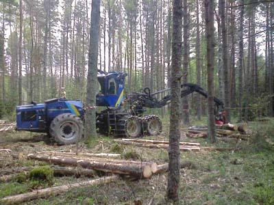 Шведская техника варварски выкорчёвывает лес