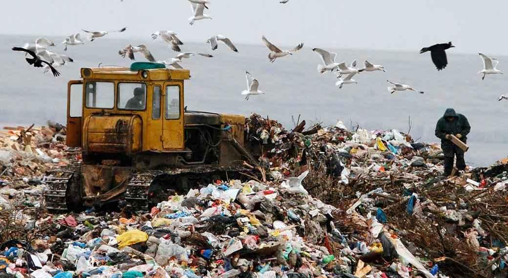 свалка мусора Калининградская область