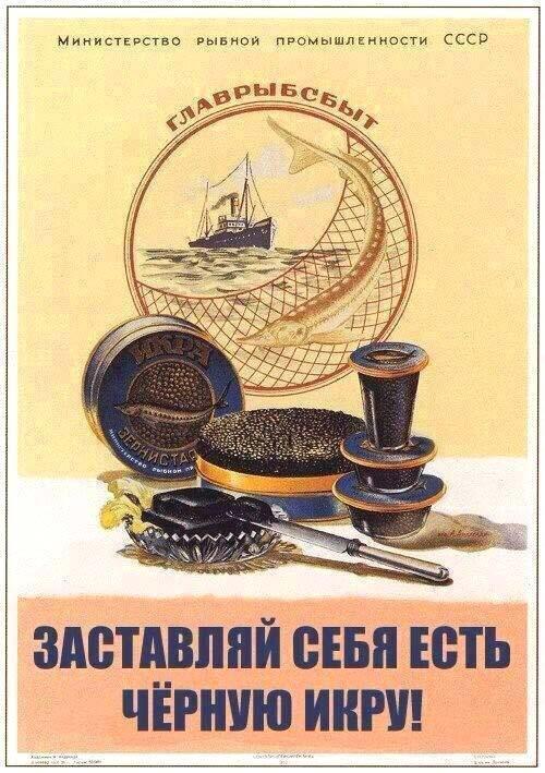"""""""Заставляй себя есть чёрную икру!"""" советский плакат"""