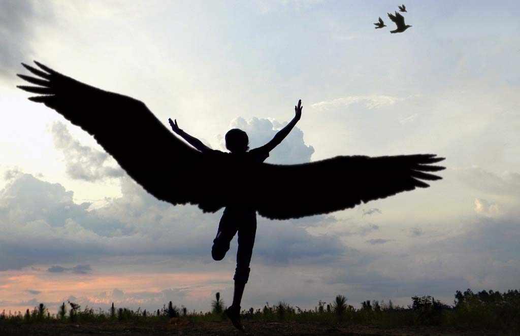 выросли крылья