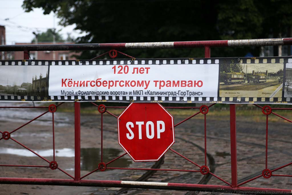 трамвай Кёнигсберг