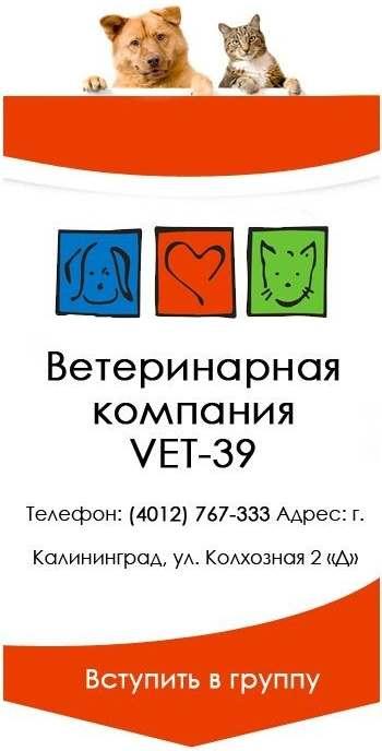 ветеринарная компания VET-39 Калининград